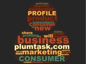 consumer profile 4
